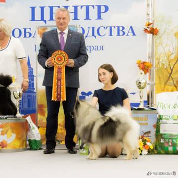 http://sd.uploads.ru/t/aMPYT.jpg