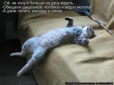 http://sd.uploads.ru/t/agyrs.jpg