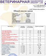 http://sd.uploads.ru/t/cAz3J.png