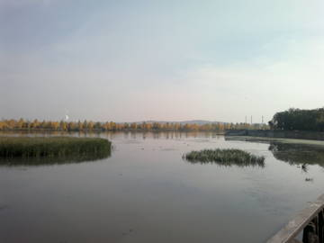http://sd.uploads.ru/t/cNFUp.jpg