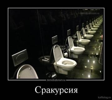http://sd.uploads.ru/t/cmbgF.jpg