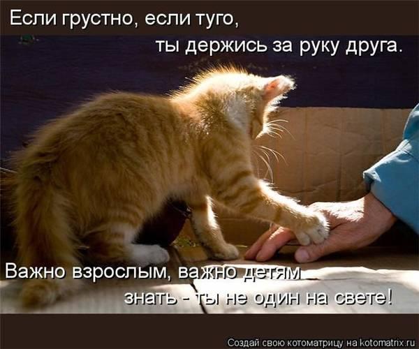 http://sd.uploads.ru/t/cuyU6.jpg