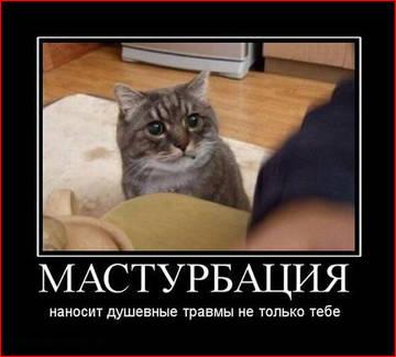 http://sd.uploads.ru/t/d47yY.jpg