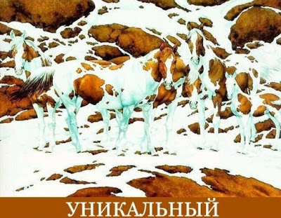 http://sd.uploads.ru/t/dFgpy.jpg