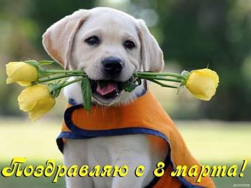 http://sd.uploads.ru/t/djpF7.jpg