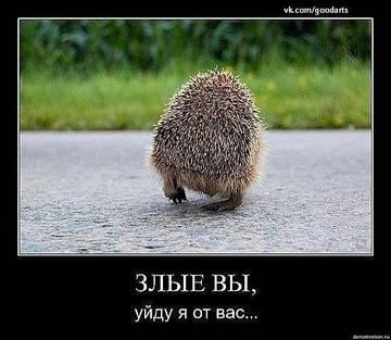 http://sd.uploads.ru/t/dwW8K.jpg