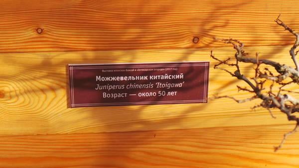 http://sd.uploads.ru/t/e2pg1.jpg