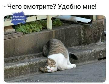 http://sd.uploads.ru/t/ekYhv.jpg