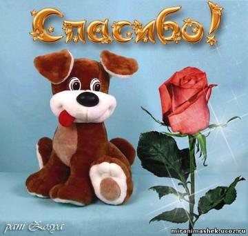 http://sd.uploads.ru/t/f97Sk.jpg