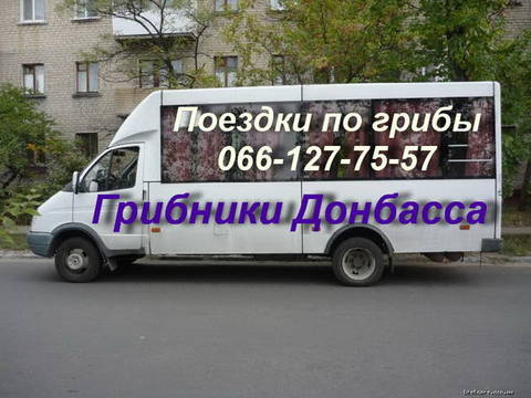 http://sd.uploads.ru/t/fIBbL.jpg