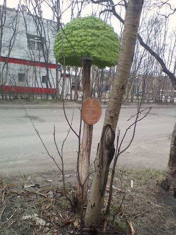 http://sd.uploads.ru/t/fPJrw.jpg