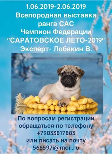 http://sd.uploads.ru/t/fQuqE.jpg