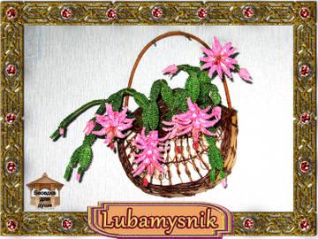 http://sd.uploads.ru/t/fb4XM.jpg