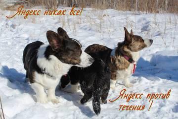 http://sd.uploads.ru/t/fqGhS.jpg