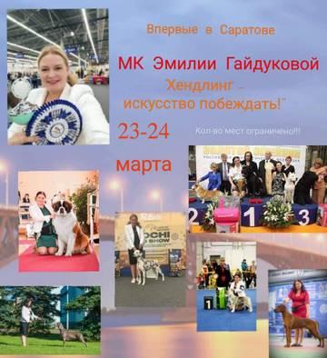 http://sd.uploads.ru/t/g2PhM.jpg