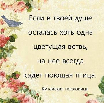 http://sd.uploads.ru/t/g2xzs.jpg