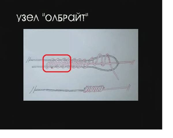 http://sd.uploads.ru/t/gBhzn.jpg