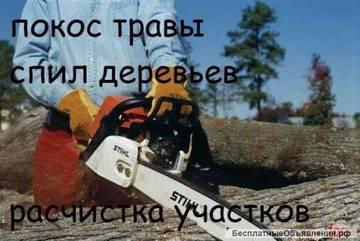http://sd.uploads.ru/t/gR7QT.jpg