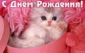 http://sd.uploads.ru/t/gerBQ.jpg