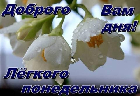 http://sd.uploads.ru/t/hXrR1.jpg
