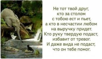 http://sd.uploads.ru/t/hqS9K.jpg