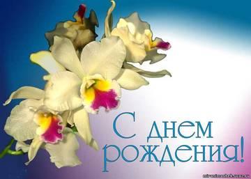 http://sd.uploads.ru/t/i4FdN.jpg