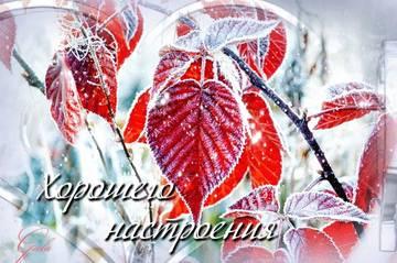 http://sd.uploads.ru/t/igv72.jpg