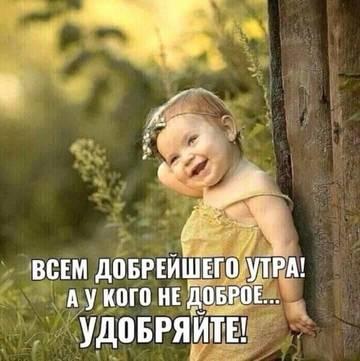 http://sd.uploads.ru/t/j3Lug.jpg