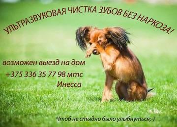 http://sd.uploads.ru/t/jADgd.jpg