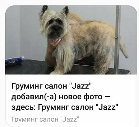 http://sd.uploads.ru/t/kft2F.jpg