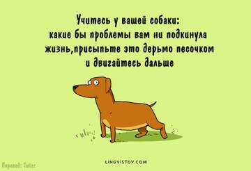 http://sd.uploads.ru/t/kxZM4.jpg