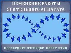 http://sd.uploads.ru/t/l2vSK.jpg