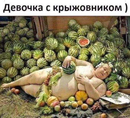 http://sd.uploads.ru/t/mijth.jpg