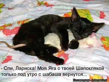 http://sd.uploads.ru/t/n7AuU.jpg