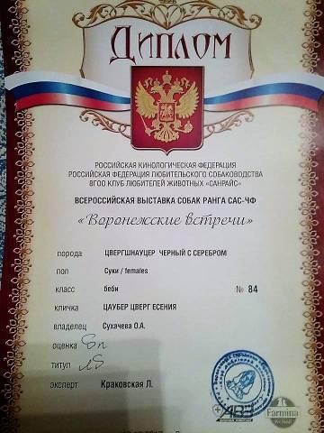 http://sd.uploads.ru/t/nHp8C.jpg