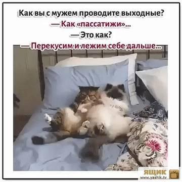 http://sd.uploads.ru/t/nLTh5.jpg