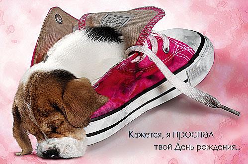 http://sd.uploads.ru/t/oGXmf.jpg