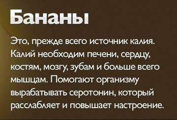 http://sd.uploads.ru/t/oHwN8.jpg
