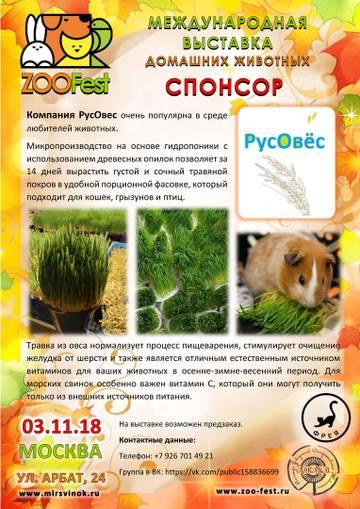 http://uploads.ru/oIvch.jpg