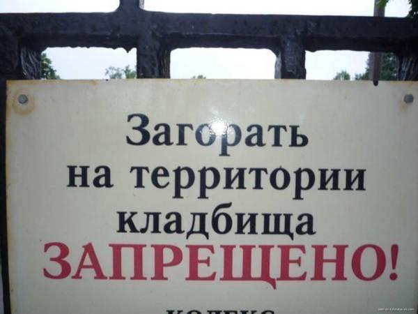 http://sd.uploads.ru/t/pHV6k.jpg