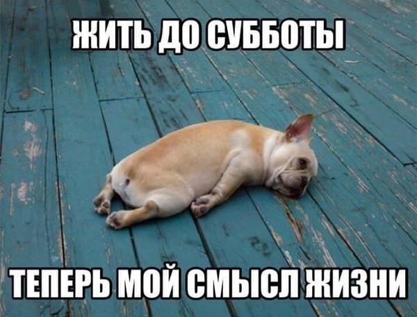 http://sd.uploads.ru/t/pU3Hr.jpg