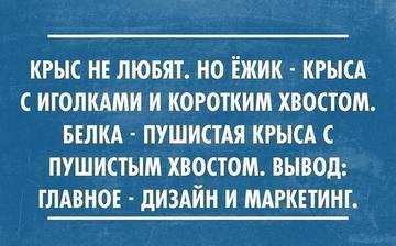 http://sd.uploads.ru/t/pjWKH.jpg