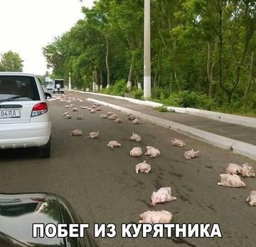 http://sd.uploads.ru/t/q2HlW.jpg
