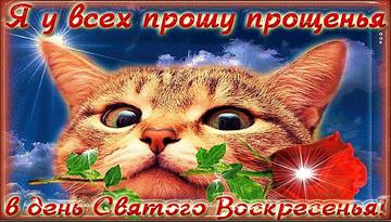 http://sd.uploads.ru/t/q6bJG.png