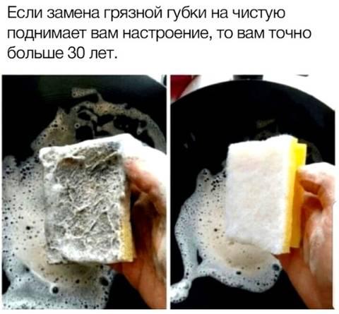 http://sd.uploads.ru/t/qV0La.jpg