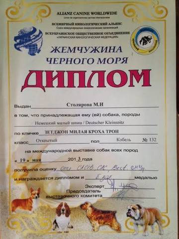 http://sd.uploads.ru/t/qWs9t.jpg
