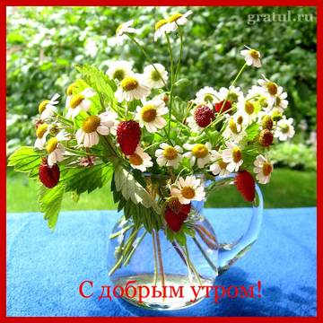 http://sd.uploads.ru/t/r0Mq7.jpg