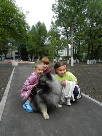 http://sd.uploads.ru/t/r1qRP.jpg