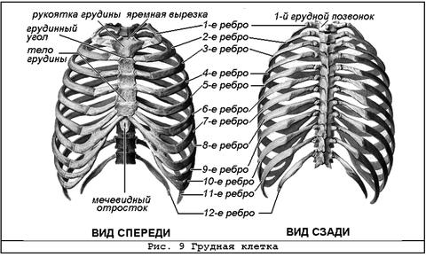 http://sd.uploads.ru/t/rd2hE.png