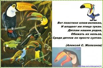http://sd.uploads.ru/t/reuwo.jpg
